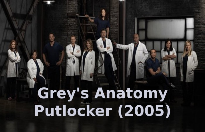 Grey's Anatomy Putlocker (2005)
